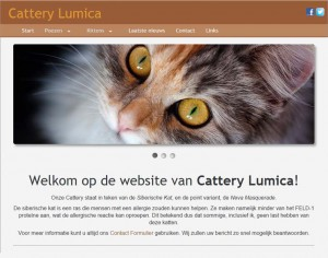 cattery-lumica.nl